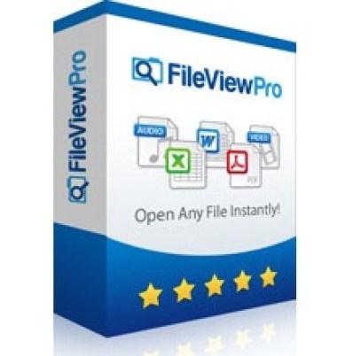 FileViewPro 1
